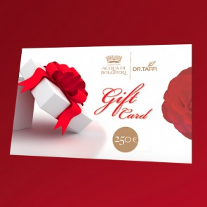 Gift Card 250 euro